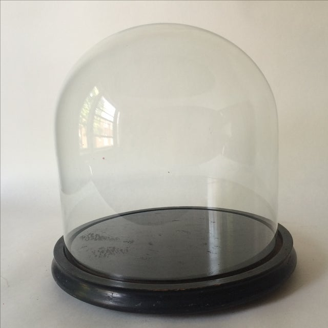 Victorian Cloche Dome with Stand - Image 7 of 8