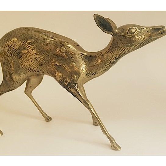 Large Brass Deer - Image 3 of 5