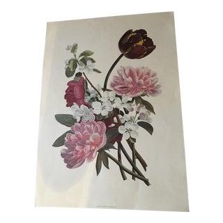 Vintage English Floral Print