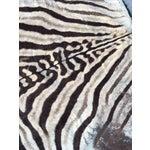 Image of Vintage Zebra Hide Rug