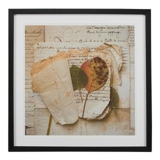 Sarreid LTD Framed Artist Edition Square Print