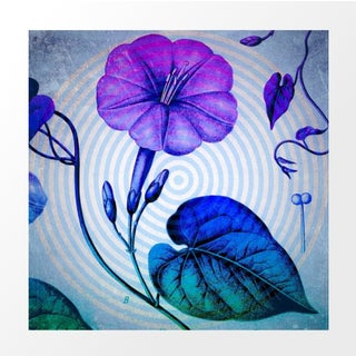 Vintage Blue Morning Glory Archival Print