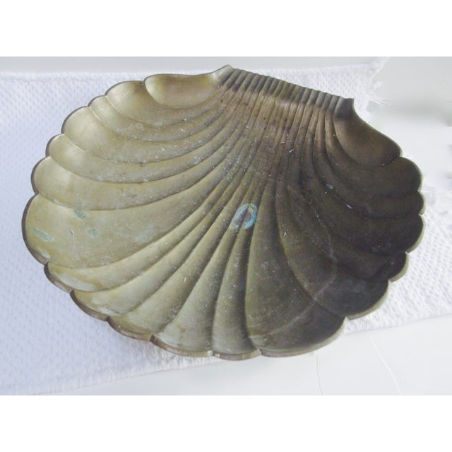 Brass Clamshell Clam Shell With Starfish - Image 7 of 8