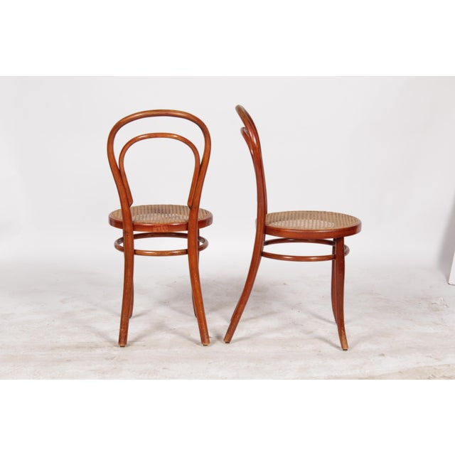 Image of 1910 Thonet Model 14 Bentwood Chairs - A Pair