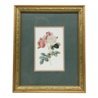 Framed Carnation Still Life Print