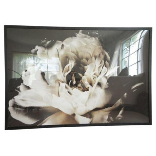 Ashley Woodson Bailey Large Framed Flower Photograph