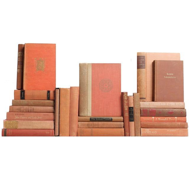 Image of Vintage Apricot Classics Books - Set of 28