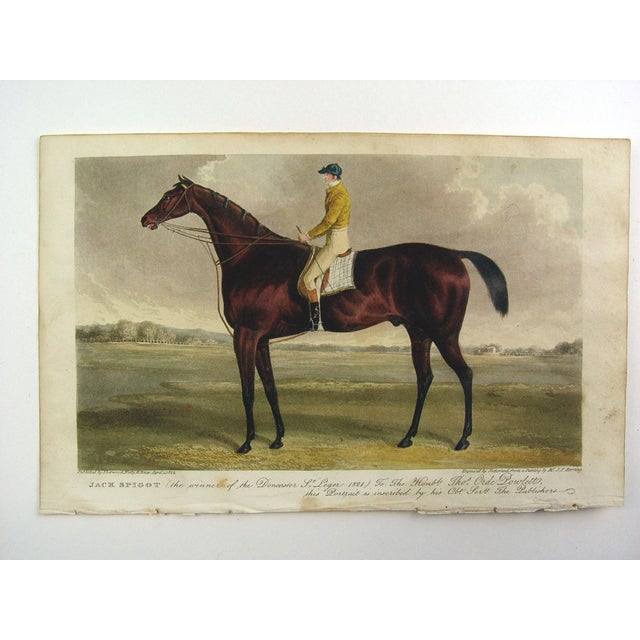 Racehorse Portrait Etching, 1822 - Image 2 of 4