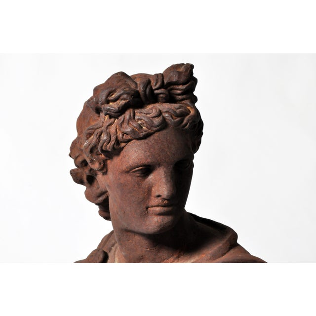 Image of Iron Bust of Apollo Belvedere