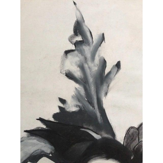 Mid-Century Charcoal Still Life Heidi Thaler - Image 2 of 4