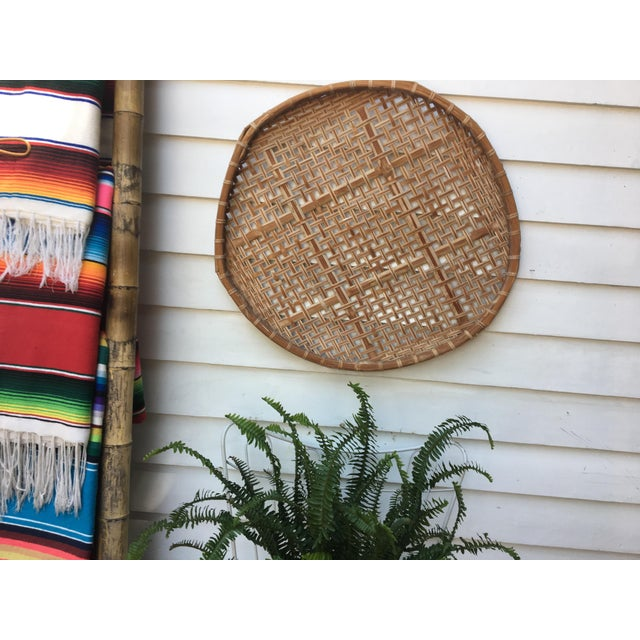 Giant Vintage Bamboo Winnowing Fish Drying Wall Basket - Image 2 of 7