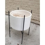 Image of Iron Stands Large Gainey Planter