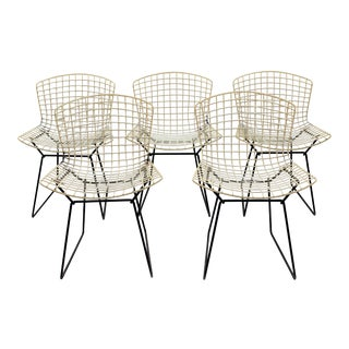 Harry Bertoia for Knoll Chairs - Set of 5