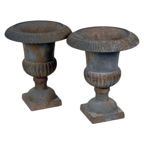 Image of Antique French Cast Iron Planters - Pair