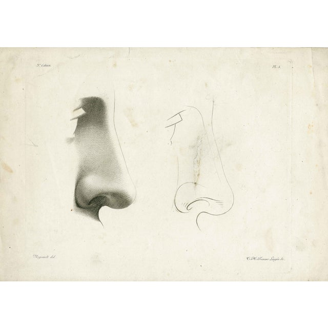 Image of Antique 19th Century Face Engravings - Set of 3