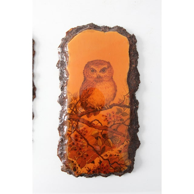 1970's Owl Paintings on Lacquered Wood - Pair - Image 4 of 9