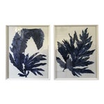 Blue and White Flower Prints - a Pair