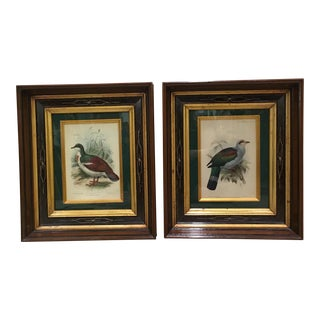 J. G. Koulemans Hand Colored Bird Lithographs - A Pair