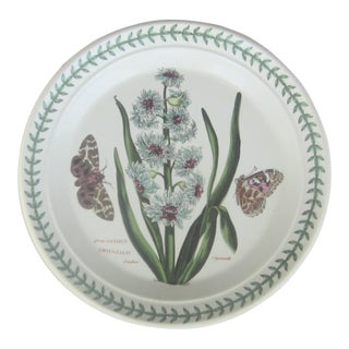 "Vintage English Portmeirion ""The Botanic Garden"" Plate"