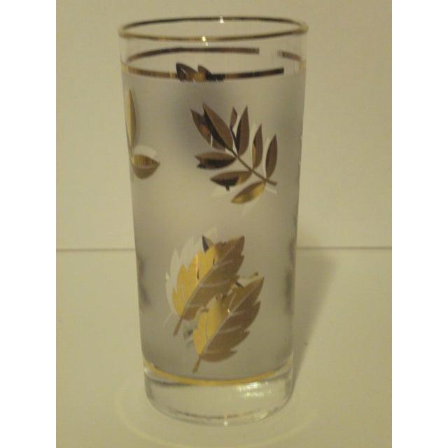 Image of Gold Leaf Pattern Barglasses - Set of 12