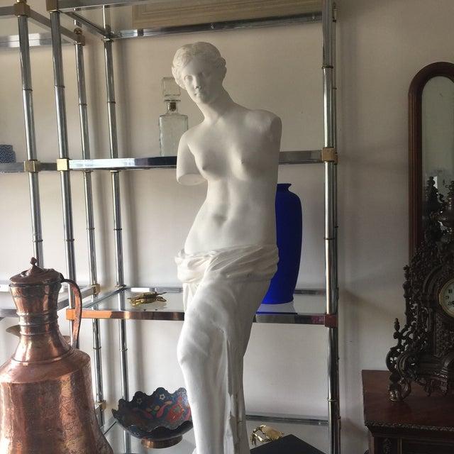 Plaster Tuscany Style Venus De Milo - Image 5 of 5