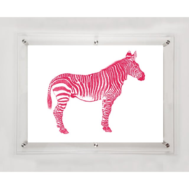 Image of Mitchell Black Home Acrylic Framed Zebra Art Print