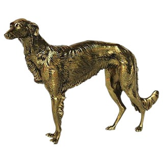 Brass Long-Haired Whippet Dog