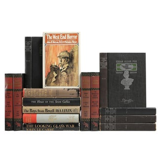 Mystery, Murder & Intrigue Books - Set of 15