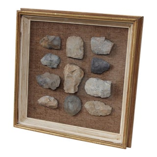 Native American Mounted Collection of Stone Scrapers