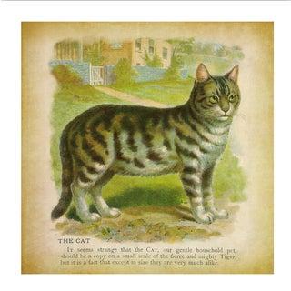 Vintage Cat Archival Print
