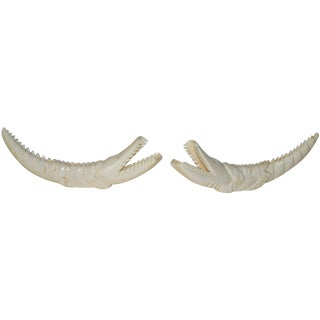Crocodile Carved Warthog Tusks - A Pair