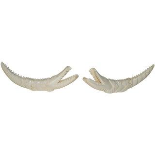 Crocodile Carved Warthog Tusks - A Pair