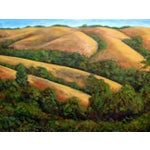 Image of Montebello Open Space Preserve Painting