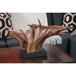 Image of Mounted Driftwood Sculpture
