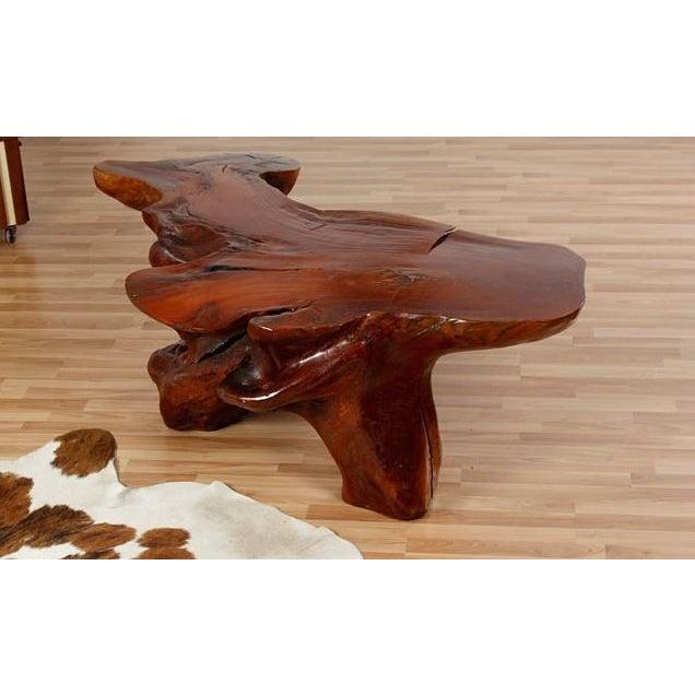 Teak Root Coffee Tables: Vintage Teak Root Coffee Table