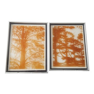 Lucid Lines '3d Tree Silhouettes on Glass' Print - A Pair