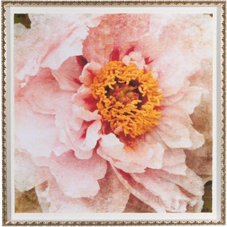 Ethan Allen Large-Scale Peony Giclee