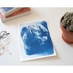Image of Cyanotype Print - Rock Face