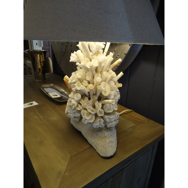 Gorgeous Authentic Coral Table Lamp - Image 5 of 6