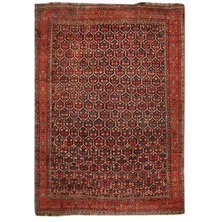 Exceptional & Rare Antique Oversize 19th Century Persian Kurdish Carpet