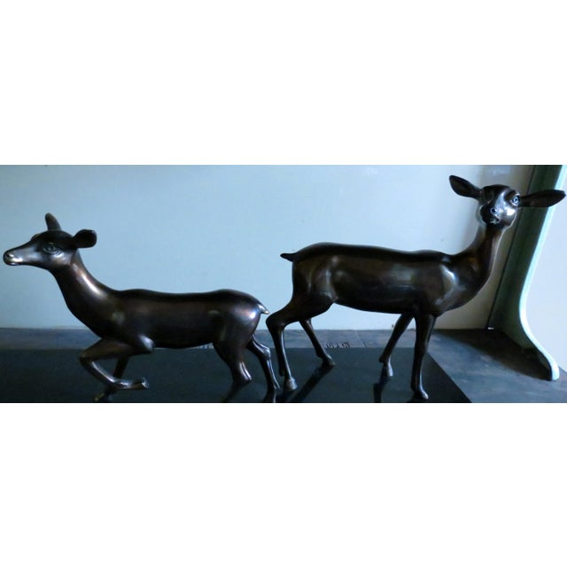 Charles Ruchot 1900s Bronze Deer Family Sculpture - Image 4 of 5