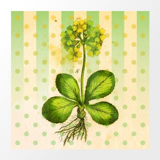 Vintage Yellow Flower Archival Print