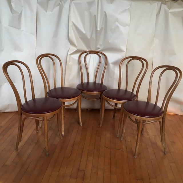 Thonet Bentwood Vienna Cafe Chairs Set Of 5 Chairish
