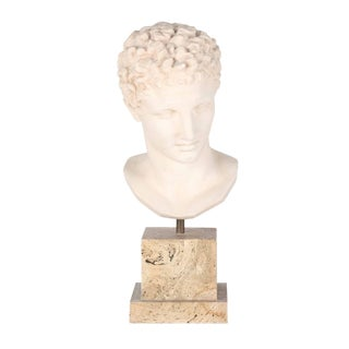 Vintage Plaster Bust After Hermes