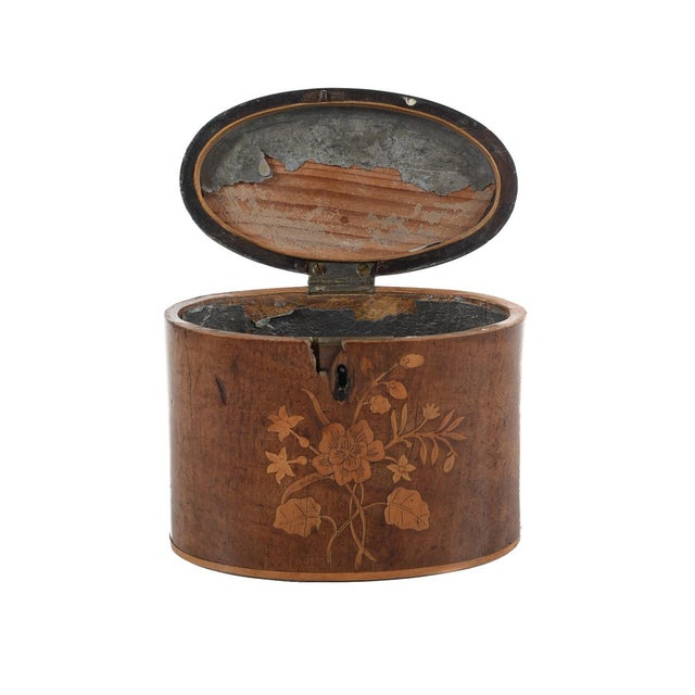 19th Century Oval Shaped Wood Box with Sea Shells - Image 9 of 9