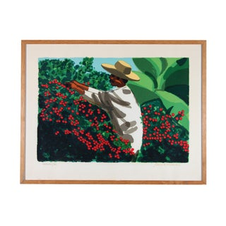 Lars Norrman, Picking Coffee 38/40 Lithograph