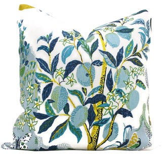 Citrus Garden With Lime Tree Decorative Pillow Cover, 20x20