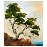 Image of Sentinel Cypress by Kathleen Murray