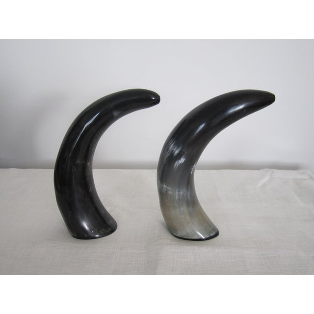 Authentic Black & White Horn Sculptures - A Pair - Image 4 of 7
