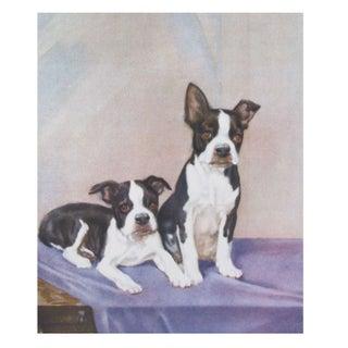 Vintage Diana Thorne Print - Bulldogs